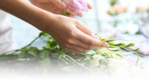 presevation-flower-guide-care
