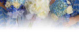 preservation-flower-guide-care